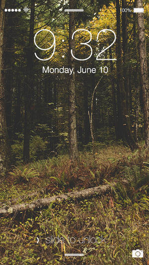 Woodlands 1080p Wallpaper