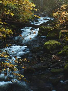 Golden Autumn Cascades