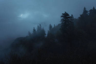 Moonlit Twilight