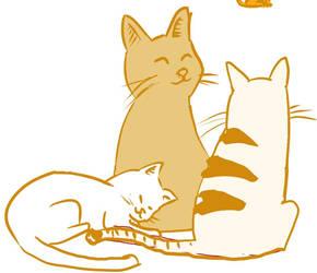Malmal Cats