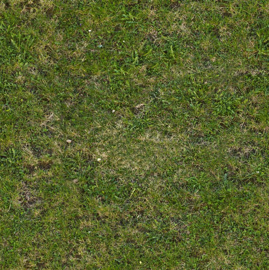 Seamless tileable grass texture by demolitiondan