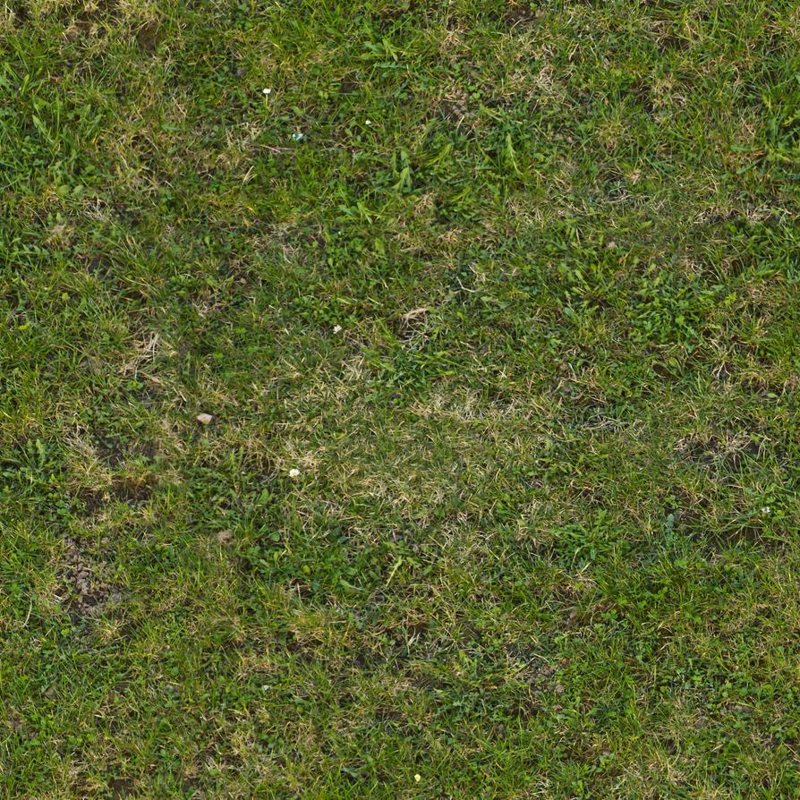 Seamless tileable grass texture by demolitiondan on DeviantArt