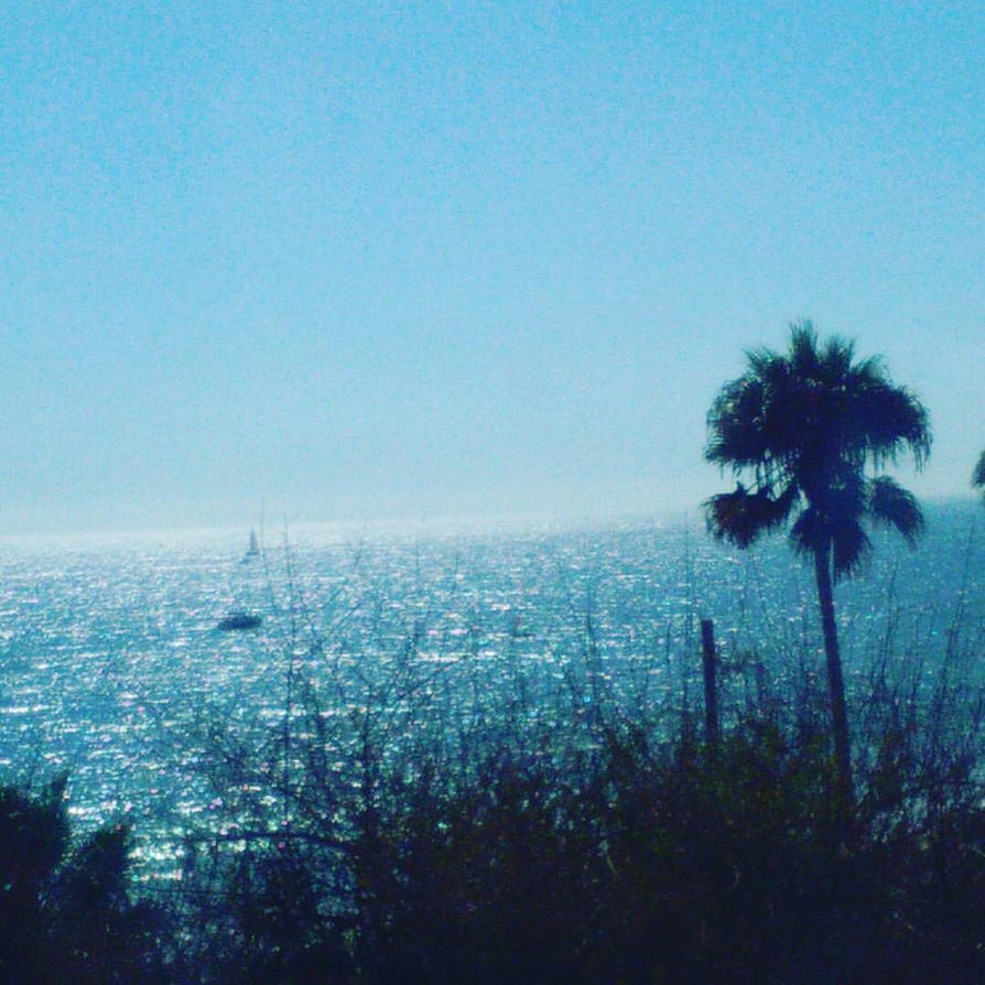 Laguna Beach by Stitch1290
