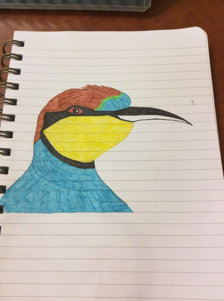 European Bee Eater by Stitch1290