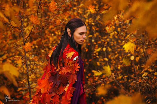 Lord of autumn. Beleriand.