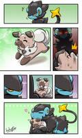 Pokemon Fancomic: A Poke Life, Ray and Lycan.