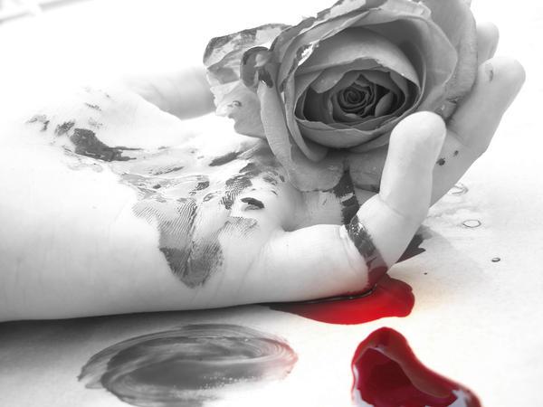 Bloody rose...