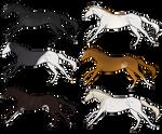 Equine Adopts (OPEN)