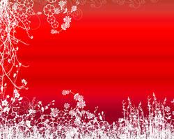 Wallpaper - Flower by misteranwa