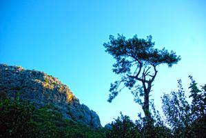 Olympus,Antalya,Turkey 9. by bigzoso
