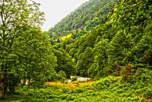 Ayder Plateau 3. by bigzoso