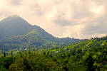 Azaklihoca Village,Rize  7.