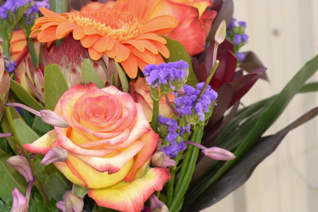 image bouquet fleur fetes des meres by marari08 on deviantart. Black Bedroom Furniture Sets. Home Design Ideas
