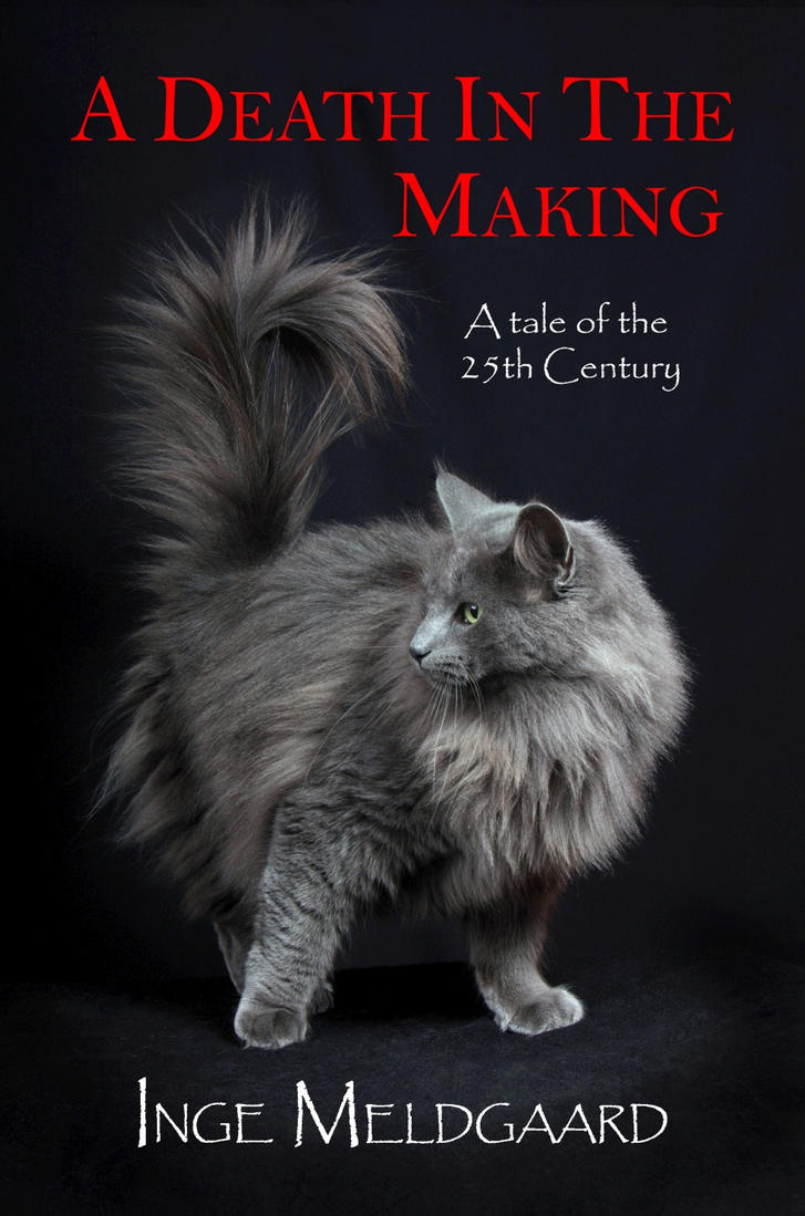 A Death In The Making - cover-  smaller by redmatilda