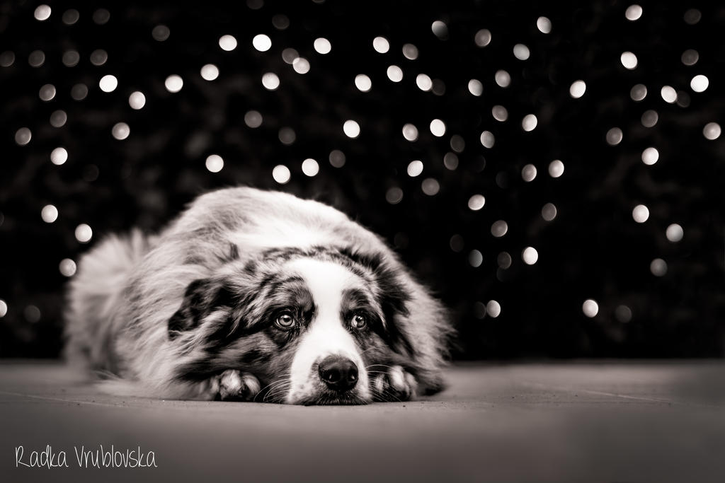 SADNESS by aussiefoto