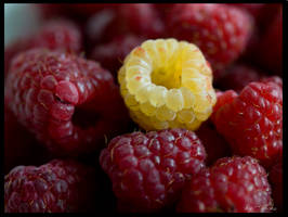 Other raspberry... by Alicess