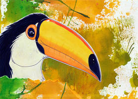 Toucan... by Bandarai