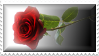Rose Stamp by Sallinillas