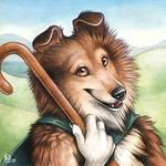 Shepherd Sheltie