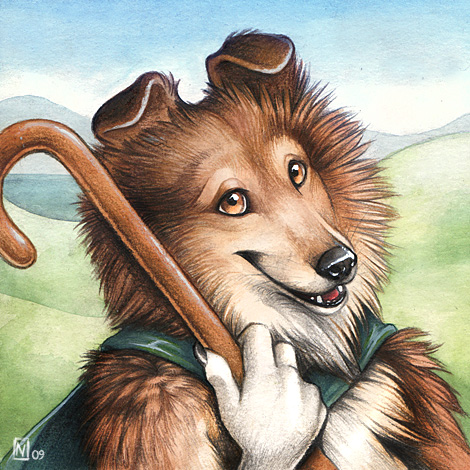Shepherd Sheltie by Nimrais