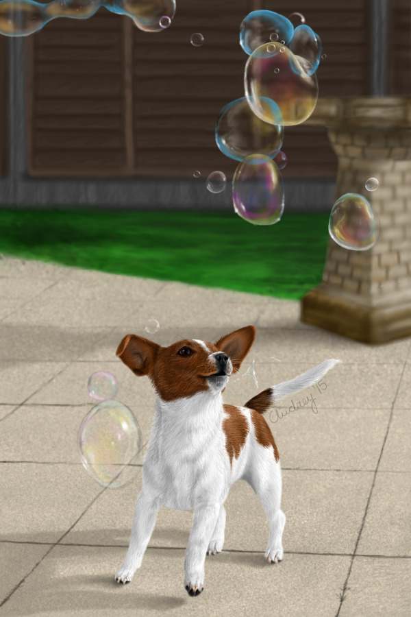 Bubble Chase