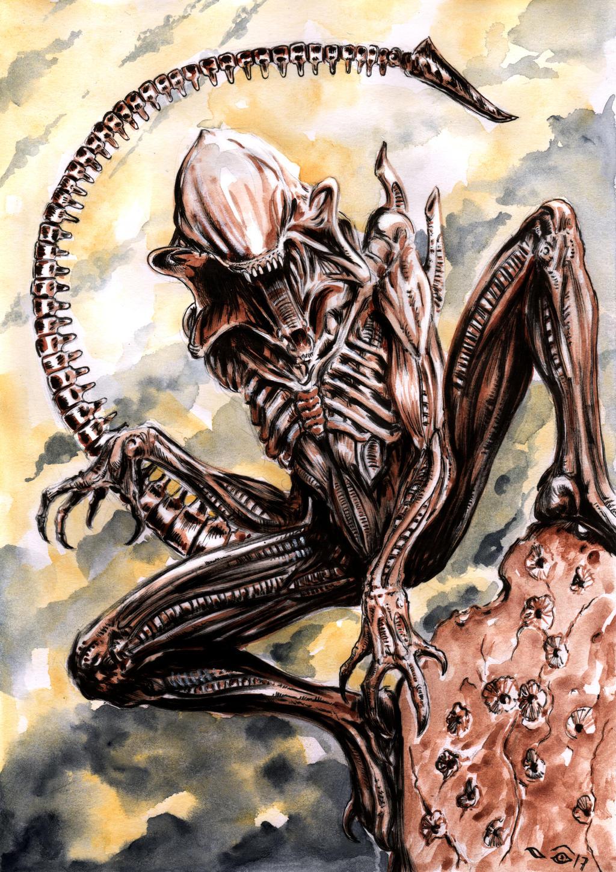 Predalien - Alien by emalterre