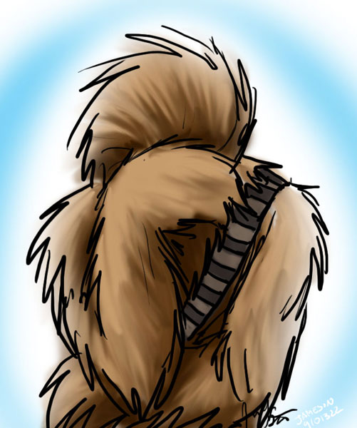 Wookie Facepalm by jameson9101322