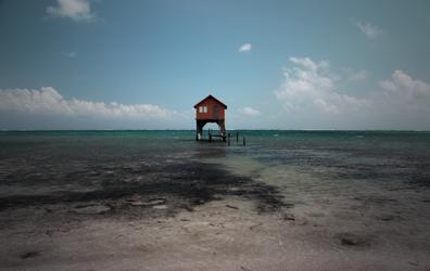 A Home by Krakentastic