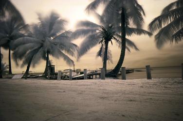 Ambergris breeze. by Krakentastic