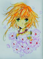Sakura - Tsubasa Chronicles II by aki-mikadzuki