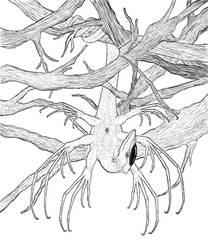 Rhynia: Arachnosaurus