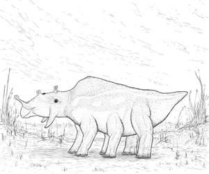 Rhynia: Zygoceros