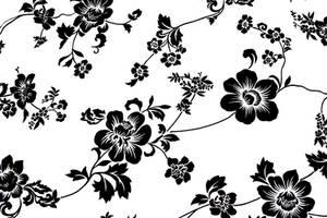 Flower-Texture by MidnightCraze