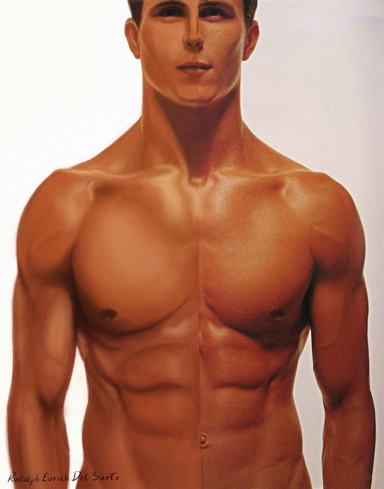 Anatomy of man