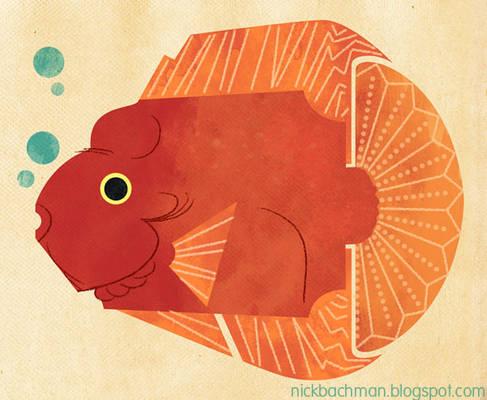 Fish Doodle 4
