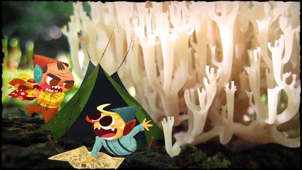 Gnome Camp