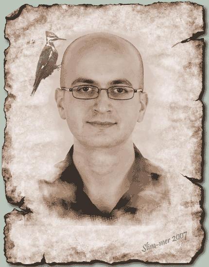 slim-mer's Profile Picture