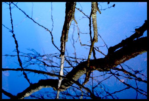 Water Sticks Blue by Ln7e