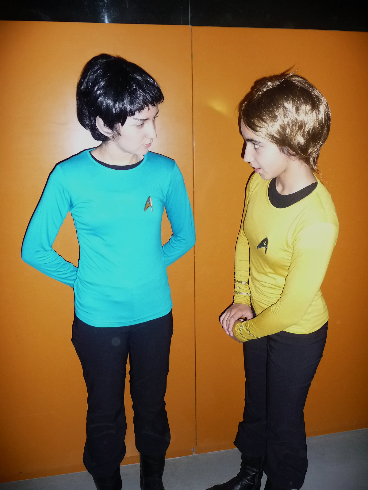 Isn't that logical, Mr Spock? by killhawkeye