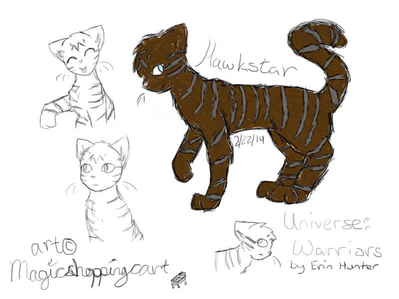 Hawkstar by magicshoppingcart