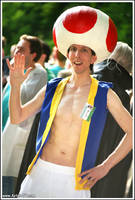 Toad Cosplay -Something something other castle by Oloring