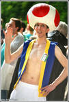 Toad Cosplay -Something something other castle