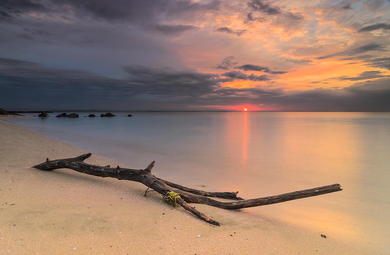New dawn new day by ibasimaikataimeto