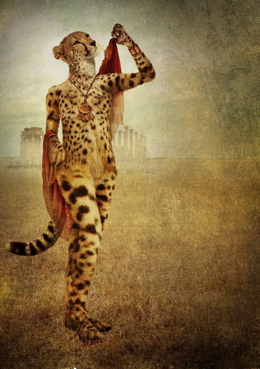 Cheetah Queen by Digimaree