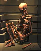 Sitting Skeleton by Digimaree