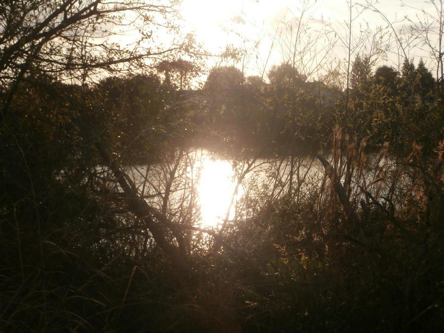Sunset on the lake by elijahloveshorror