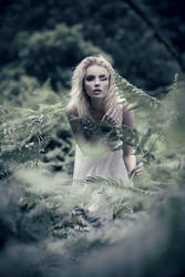 Wuthering Heights by sarahlouisejohnson