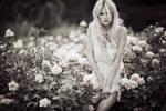 I never promised a rose garden