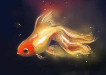 goldfish by Trutze