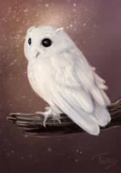 white fluff by Trutze